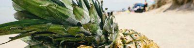 proprietà e benefici ananas